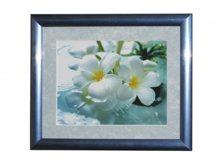 Два белых цветка