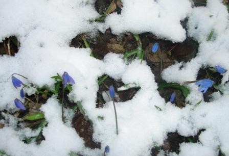 Зима встречается с весной!